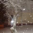 Śnieg1