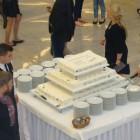 Tort urodzinowy FG1